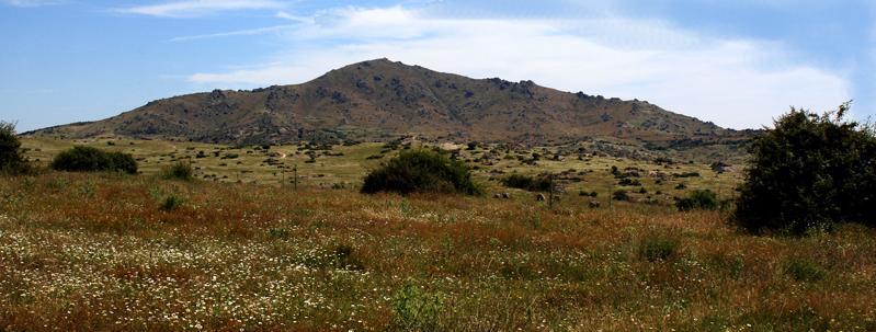 Cerro de San Pedro en verano